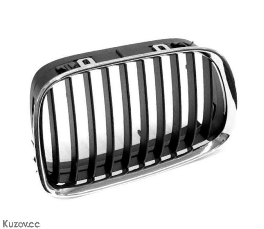Решітка в капоті лев. BMW 5 E39 (Tempest)
