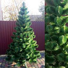 Сосна зеленая 2.3м искусственная новогодняя праздничная елка ель, фото 3