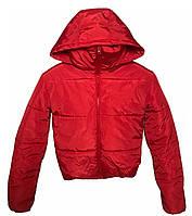 Коротка червона куртка з капюшоном, осінь/зима розміри 42 - 48