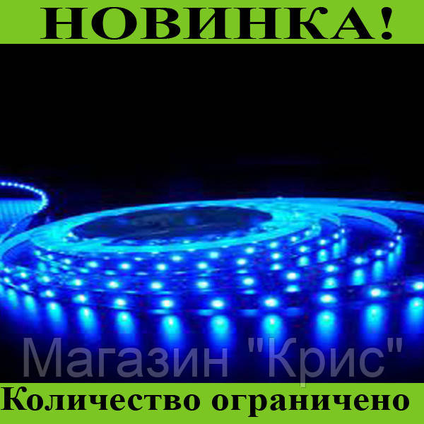 Светодиодная лента 3528 (60 светодиодов, 12V, Blue) на силиконе! Распродажа