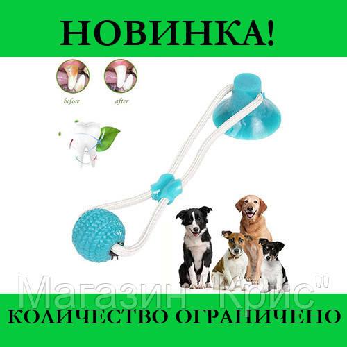 Игрушка для собак канат на присоске с мячом! Распродажа