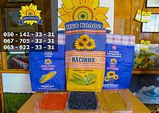 Семена Подсолнечника Равелин (Гранстар 50г) От Производителя, фото 3