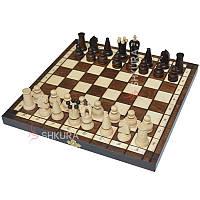 Шахматы + шашки, 31х31 см, фото 1