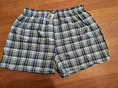 """Чоловічі шорти(сімейні c ширинка на гудзику) клітина Марка """"CASTOM"""" Арт.D-18001"""