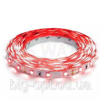 Светодиодная LED лента 3528 Red (красный диод)