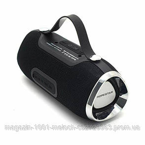 Колонка Bluetooth HOPESTAR H40, фото 2