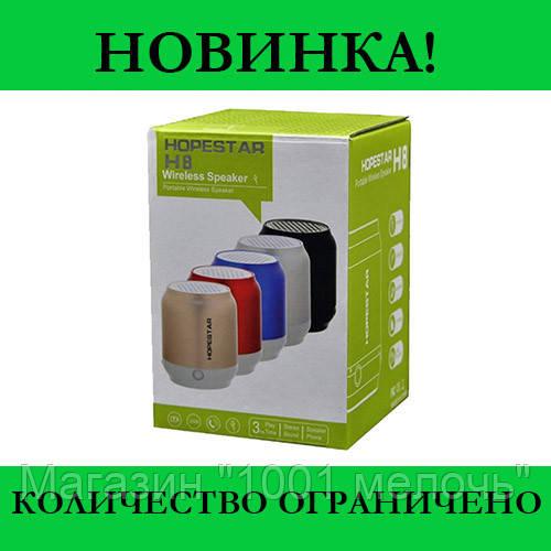 Колонка Bluetooth HOPESTAR H8