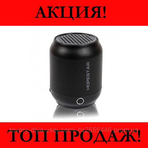 Колонка Bluetooth HOPESTAR H8