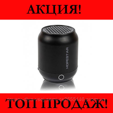 Колонка Bluetooth HOPESTAR H8, фото 2
