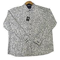 Рубашка BIRINDELLI с длинным рукавом большого размера батал Турция
