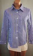 Жіноча класична сорочка в смужку, блакитна, 44-46