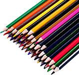 Разноцветные карандаши Vincis Secret 48 штук, фото 3
