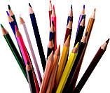 Разноцветные карандаши Vincis Secret 48 штук, фото 5