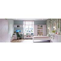Комплект подростковой мебели  Х-Скаут-7 розовый мат