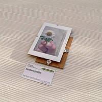 Антирама бюджетная 100х150мм формат А6 стеклянная безбагетная клямерная рама рамка-клип или рамка без рамки