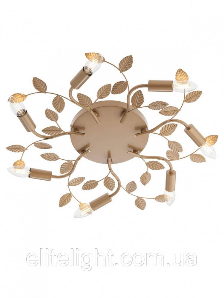 Потолочный светильник Smarter 02-981 Tiara