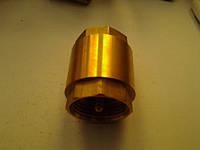 Клапан обратный муфтовый  Ду 25 вставка пластик