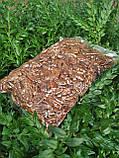 Пекан карамельний чищений горіх Америка 1 кг, фото 7