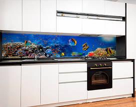 Фартук для кухни водный мир, рыбки, море, корралы Самоклейка 60 x 200 см, фото 2