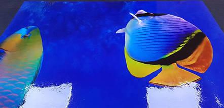 Фартук для кухни водный мир, рыбки, море, корралы Самоклейка 60 x 200 см, фото 3