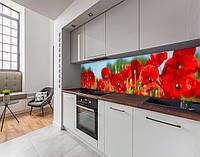 Кухонный фартук для кухни маки, полевые цветы, размытый фон Самоклейка 60 x 200 см