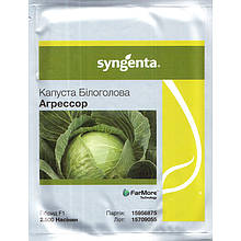 """Семена капусты """"Агрессор"""" F1 (2500 семян) от Syngenta, фракция 2,5-2,75 мм. Оригинал"""