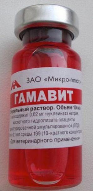 ГАМАВИТ комбинированный иммуномодулятор, инъекционный, 10 мл