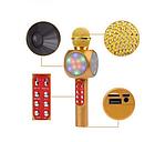 ОПТ Беспроводной караоке микрофон колонка со цветомузыкой SQone 1816 Золотой, фото 2