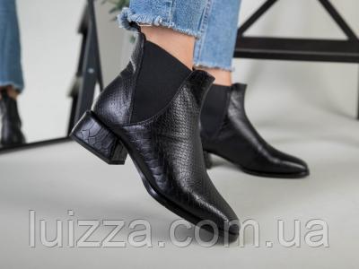 Ботинки женские кожа питон черные на резинке