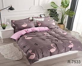 Двуспальный Евро комплект постельного белья Ранфорс с компаньоном R7533