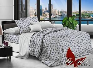 Двуспальный Евро комплект постельного белья поплин  с компаньоном PL5812