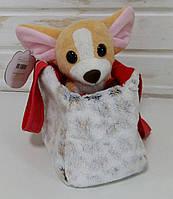 Собачка чихуахуа с сумочкой СО-0102