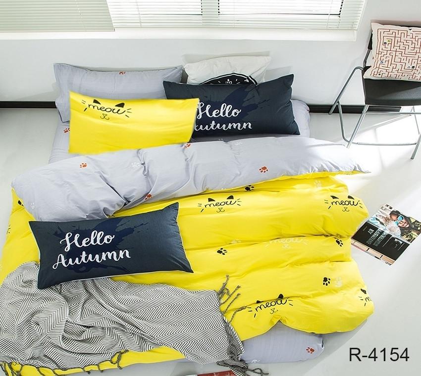 Двуспальный комплект постельного белья Ранфорс с компаньоном R4154