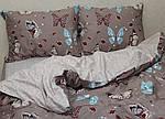 ТМ TAG Комплект постельного белья с компаньоном S360, фото 6