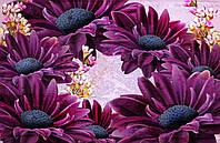 Фотообои Венок с цветов