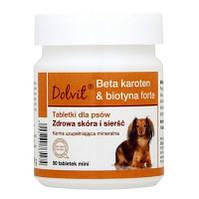 Dolfos Beta-carotene Biotin Forte - Вітамінно-мінеральний комплекс для собак (MINI, банка 90 міні табл.)