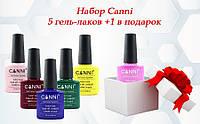 Набор гель-лаков Canni 5+1 в подарок
