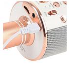 ОПТ Беспроводной микрофон для караоке Wster WS-858, фото 3