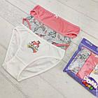 Детские трусики для девочек 3-4 года 6558161273256, фото 2