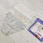 Дитячі трусики для дівчаток 3-4 роки 6558161273256, фото 2