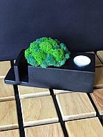 Салфетница подсвечник со мхом деревянная 23х7х9 см Оригинальный подарок сувенир декор для дома кафе из мха