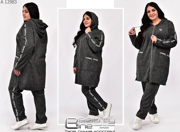 Теплый спортивный костюм женский на флисе в большом размере Minova Размеры: 52-54, 56-58, фото 2