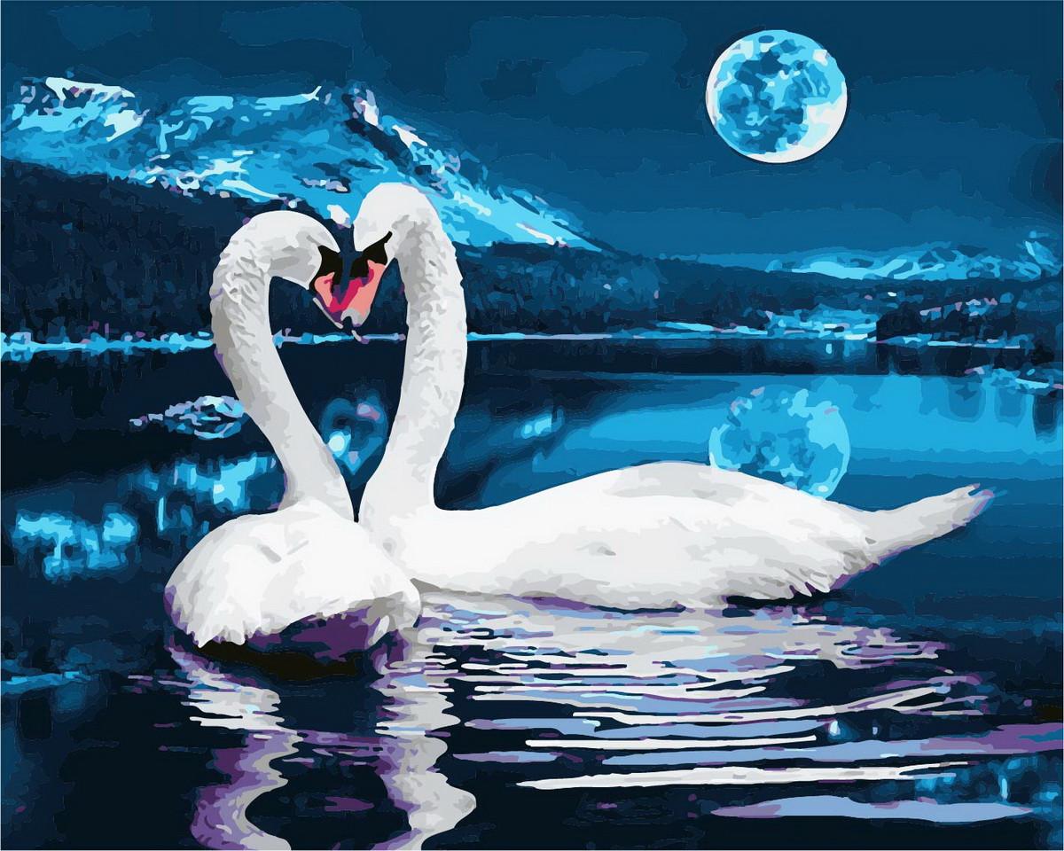 Картина по номерам 40х50см. GX28455 Лебеди при луне Rainbow