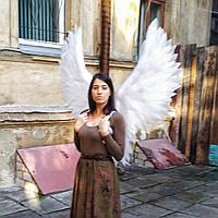 Крылья 1,4×1,4 м