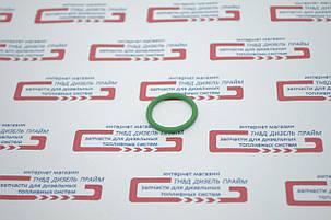 Кольцо уплотнительное секции ТНВД КамАЗ 33.1111069 (зелёное), фото 2