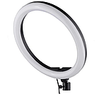Кольцевая Led лампа MM-988 с зеркалом 35 см 183191, фото 4