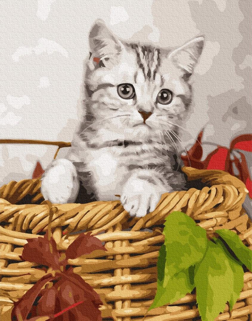 Картина по номерам Котенокв корзинке