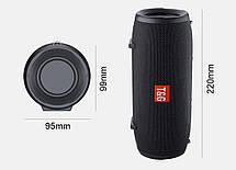 Портативна bluetooth колонка T&G TG-125, чорна, фото 2