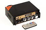 Усилитель звука UKC SN-828BT Bluetooth, фото 3