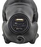 Беспроводная портативная Bluetooth колонка CoolDog CH-M12 Black, фото 6